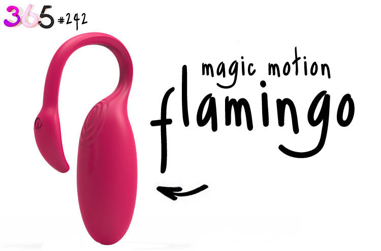 flamingo smart vibe