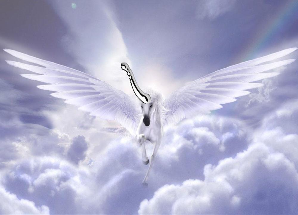 Dit is een afbeelding van unicorn njoy eleven
