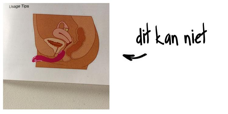 Dit is een afbeelding van lovense osci vibrator anatomie vagina