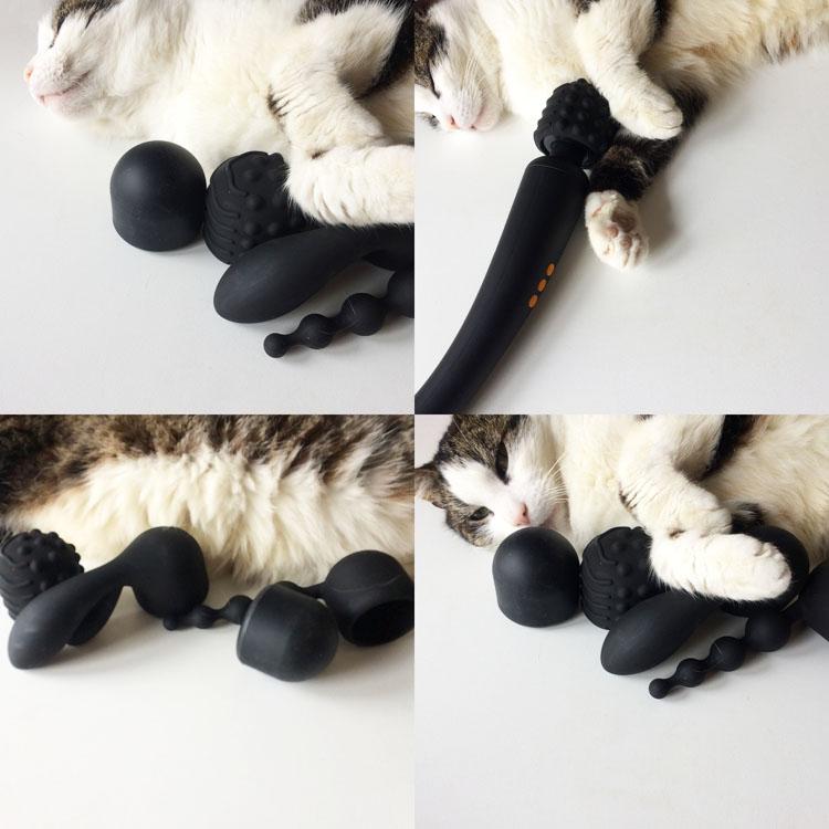 Dit is een afbeelding van pornhub supercharged wand vibrator set met frank sinatra