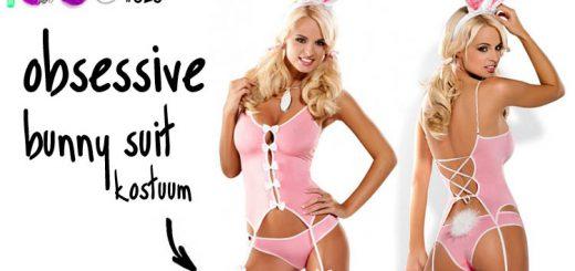 Dit is een afbeelding van obsessive bunny suit kostuum lingerie review